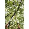 Kép 3/6 - Fiskars PowerGearX ágvágó, erőátviteles - LX98