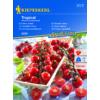 Kép 1/2 - Kiepenkerl vetőmag, cseresznyeparadicsom, Tropical F1