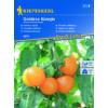Kép 1/2 - Kiepenkerl vetőmag, salátaparadicsom, Golden Königin