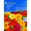 Kép 1/2 - Kiepenkerl vetőmag, sarkantyúvirág, TipTop Mix