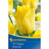 Kép 1/2 - kiepenkerl tulipa strong gold triumph tulipán virághagymák