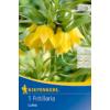 Kép 1/2 - kiepenkerl fritillaria lutea császárkorona virághagyma