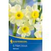Kép 1/2 - kiepenkerl narcissus minnow botanikai nárcisz virághagymák