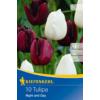 Kép 1/2 - kiepenkerl tulipa night and day tulipán virághagymák