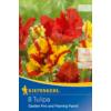 Kép 1/2 - kiepenkerl tulipa garden fire tulipán virághagymák