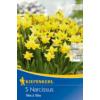 Kép 1/2 - kiepenkerl narcissus tete a tete botanikai nárcisz virághagymák