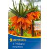 Kép 1/2 - kiepenkerl császárkorona virághagyma fritillaria orange beauty