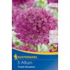 Kép 1/2 - kiepenkerl díszhagyma virághagymák allium purple sensation