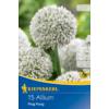 Kép 1/2 - kiepenkerl allium ping pong díszhagyma virághagymák