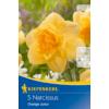 Kép 1/2 - kiepenkerl orange juice nárcisz virághagymák