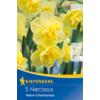 Kép 1/2 - kiepenkerl yellow cheerfulness nárcisz virághagymák