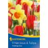 Kép 1/2 - kiepenkerl frühlings duo nárcisz és tulipán virághagymák
