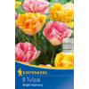Kép 1/2 - kiepenkerl bright harmony tulipán virághagymák