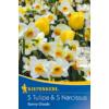 Kép 1/2 - kiepenkerl sunny clouds mix vegyes tulipán és nárcisz virághagymák