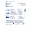 Kép 2/2 - kiepenkerl color symphonie blue harmony virághagyma összeállítás