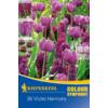 Kép 1/2 - kiepenkerl violet harmony lila virághagyma összeállítás