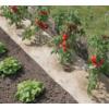 Kép 1/2 - flaxhemp-természetes talajtakaró