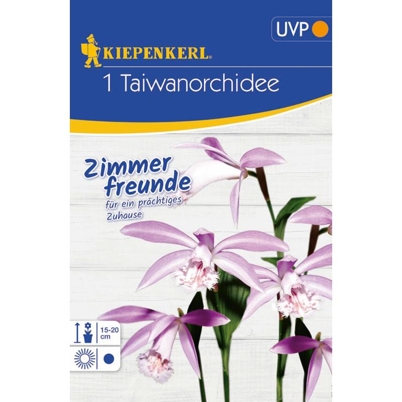kiepenkerl tajvani orchidea virághagyma virághagyma