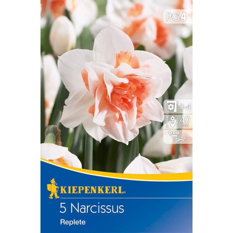 kiepenkerl narcissus replete teltvirágú nárcisz virághagymák