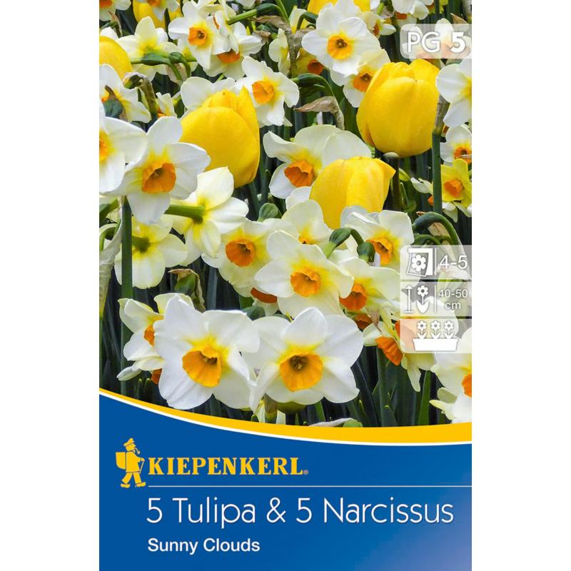 kiepenkerl sunny clouds mix vegyes tulipán és nárcisz virághagymák