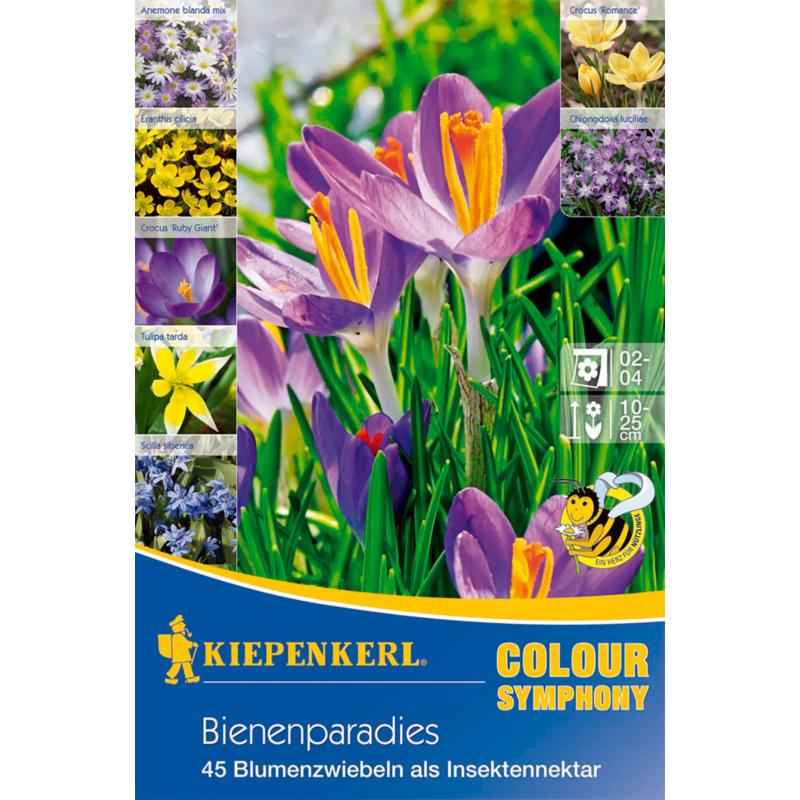 kiepenkerl bienenparadies méhlegelő virághagyma összeállítás