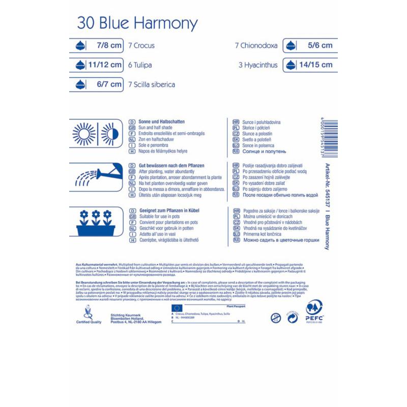 kiepenkerl color symphonie blue harmony virághagyma összeállítás