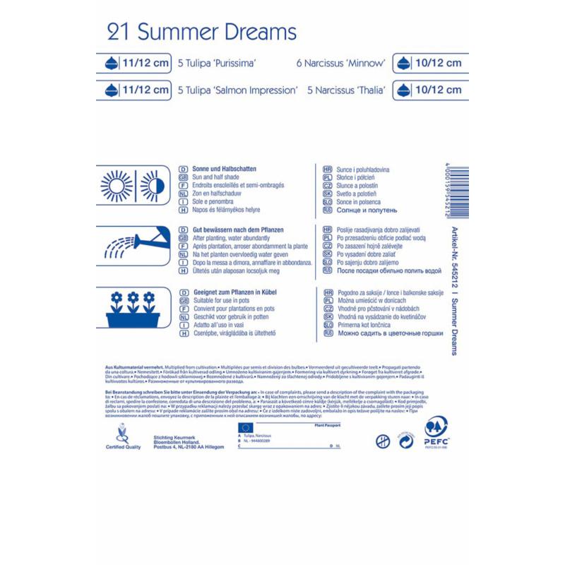 kiepenkerl summer dreams virághagyma összeállítás